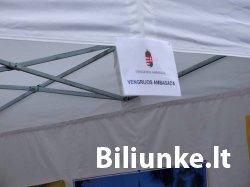 Europos Kalbų Diena 2013